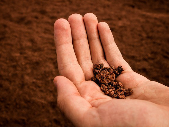 Researchers at Curtin University have found that effective soil carbon management could be the key to combat greenhouse gas emissions and climate change.