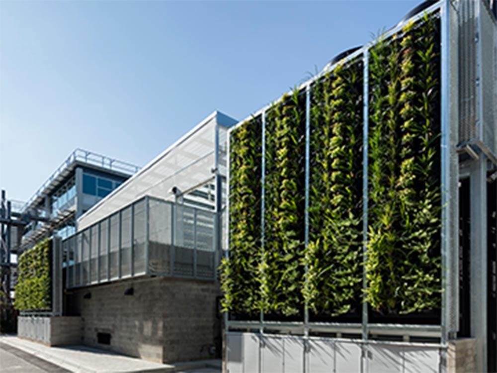 Monash Uni S Living Wall Installation Aid Greener Public Spaces