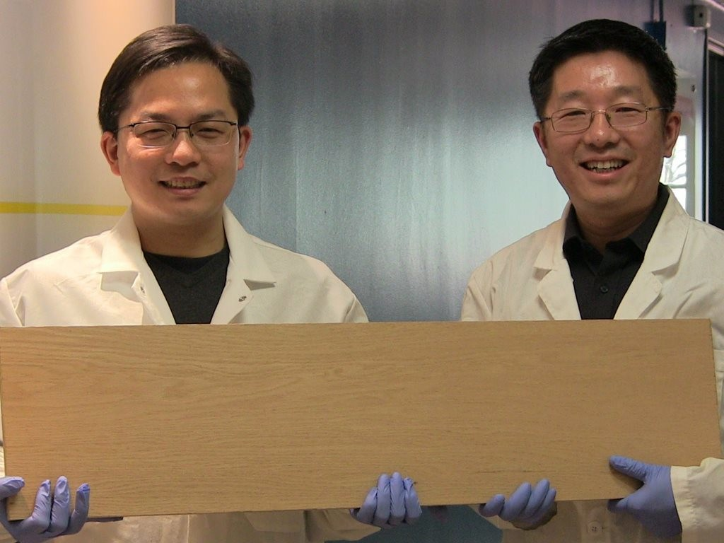Liangbing Hu, left, and Teng Li, right, have found a new way to treat wood that makes it up to 12 times stronger than natural wood. Image: University of Maryland