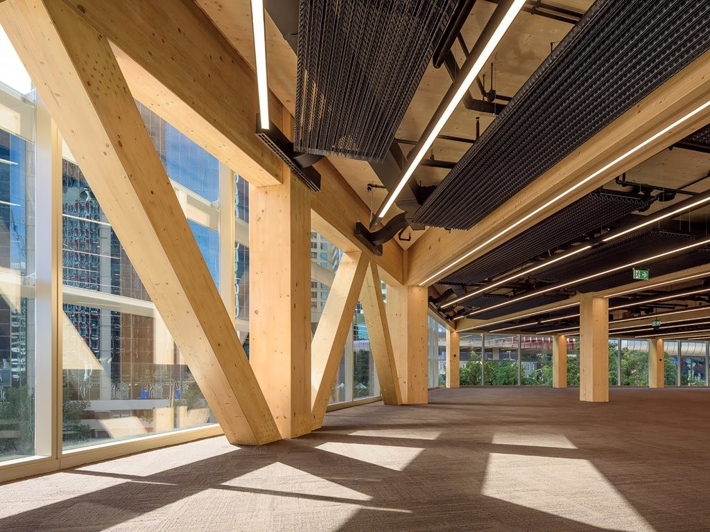 International House Sydney by Tzannes is Australia's first cross-laminated timber office. Photography by Ben Guthrie